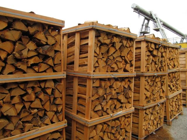 На Сумщині лісгоспи підвищать тарифи на поставку дров АТОшникам