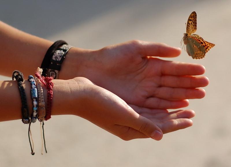Возьми мечту в свои руки