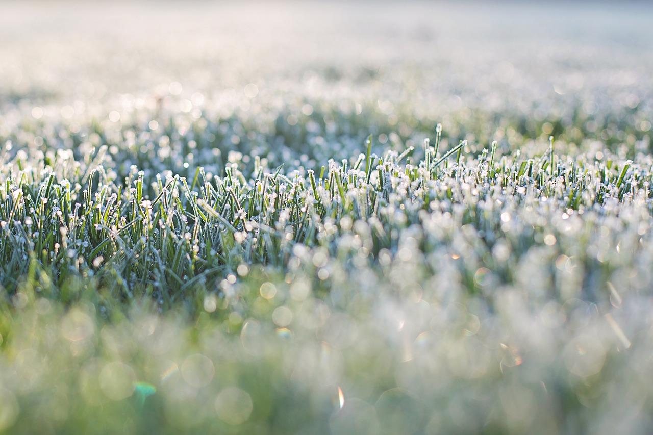 Синоптики попередили про заморозки вУкраїні нанайближчі три дні