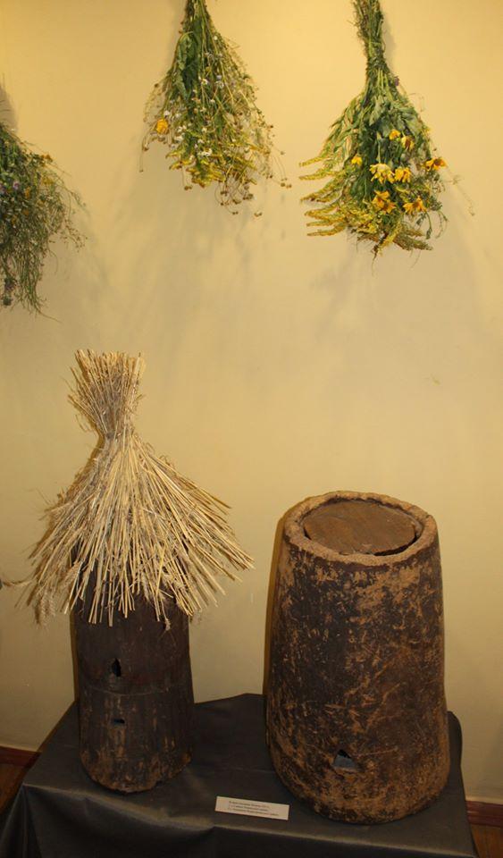 У Сумах відкрилася виставка до Дня пасічника, фото-2